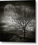 February Tree Metal Print