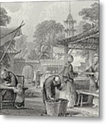 Feeding Silkworms And Sorting Cocoons Metal Print