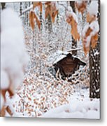 Feeding Site In The Forest In Winter  Metal Print