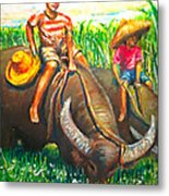 Feeding Water Buffalo Metal Print