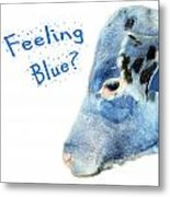 Feeling Blue Calf Metal Print
