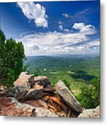 Feeling On Top Of The World Metal Print