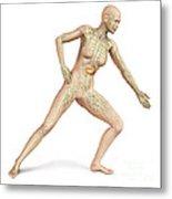 Female Body In Dynamic Posture Metal Print