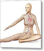 Female Body Sitting In Dynamic Posture Metal Print