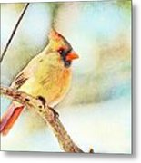 Female Northern Cardinal - Digital Paint I Metal Print