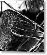Fence And Barbed Wire Metal Print