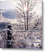 Fence And Tree Frozen In Ice Metal Print
