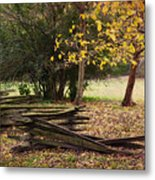 Fence And Tree In Autumn Metal Print