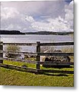 Fence At Kielder Water Metal Print