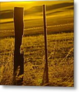 Fence Post In The Morning Light Metal Print