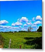 Fence Row And Clouds Metal Print