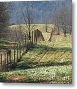 Fence View Metal Print