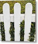 Fence With Hedge Metal Print