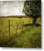 Fence With Tree Metal Print