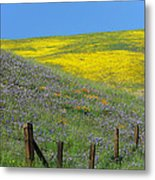 Fenced In Flowers Metal Print