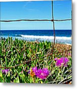 Fenced In Metal Print