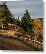 Fenced In Warm Autumn Light Metal Print