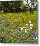 Fenceline Wildflowers Metal Print