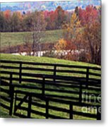 Fences In The Fall Metal Print