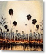 Fenholloway River Florida Metal Print