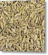 Fennel Seeds Metal Print