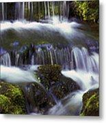 Fern Falls - 31 Metal Print