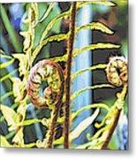 Fern Twirls Metal Print