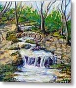 Ferndell Creek Noon  Metal Print