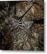 Ferns 437-08-13 Marucii Metal Print