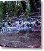 Ferns Dancing Metal Print