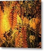 Ferns In Fall Metal Print