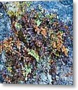 Ferns On Cliffside Metal Print