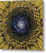 Fibonaccis Mandela V.2 Metal Print