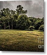 Field And Tress Metal Print