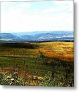 Field Metal Print by Christian Rooney