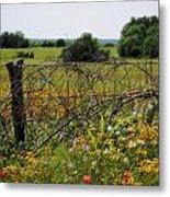 Field Of Flowers 3 Metal Print