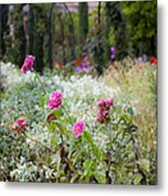 Field Of Flowers On A Rainy Day Metal Print