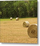 Field Of Freshly Baled Round Hay Bales Metal Print by James BO  Insogna
