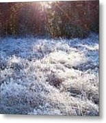 Field Of Frost Metal Print