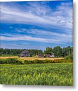 Field Of Green Metal Print