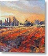 Field Of Light Oil Painting Metal Print
