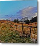 Field Of The Cotswold Metal Print