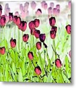 Field Of Tulips - Photopower 1492 Metal Print
