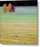 Field With Four Trees Metal Print