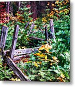 Fields And Fences Of Wawona In Yosemite National Park Metal Print