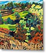 Fields In Autumn Metal Print