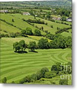 Fields In Northern Ireland Metal Print