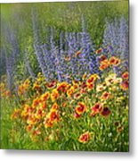 Fields Of Lavender And Orange Blanket Flowers Metal Print