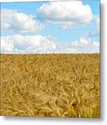 Fields Of Wheat Metal Print