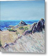 Fields With Rocks And Sea Metal Print